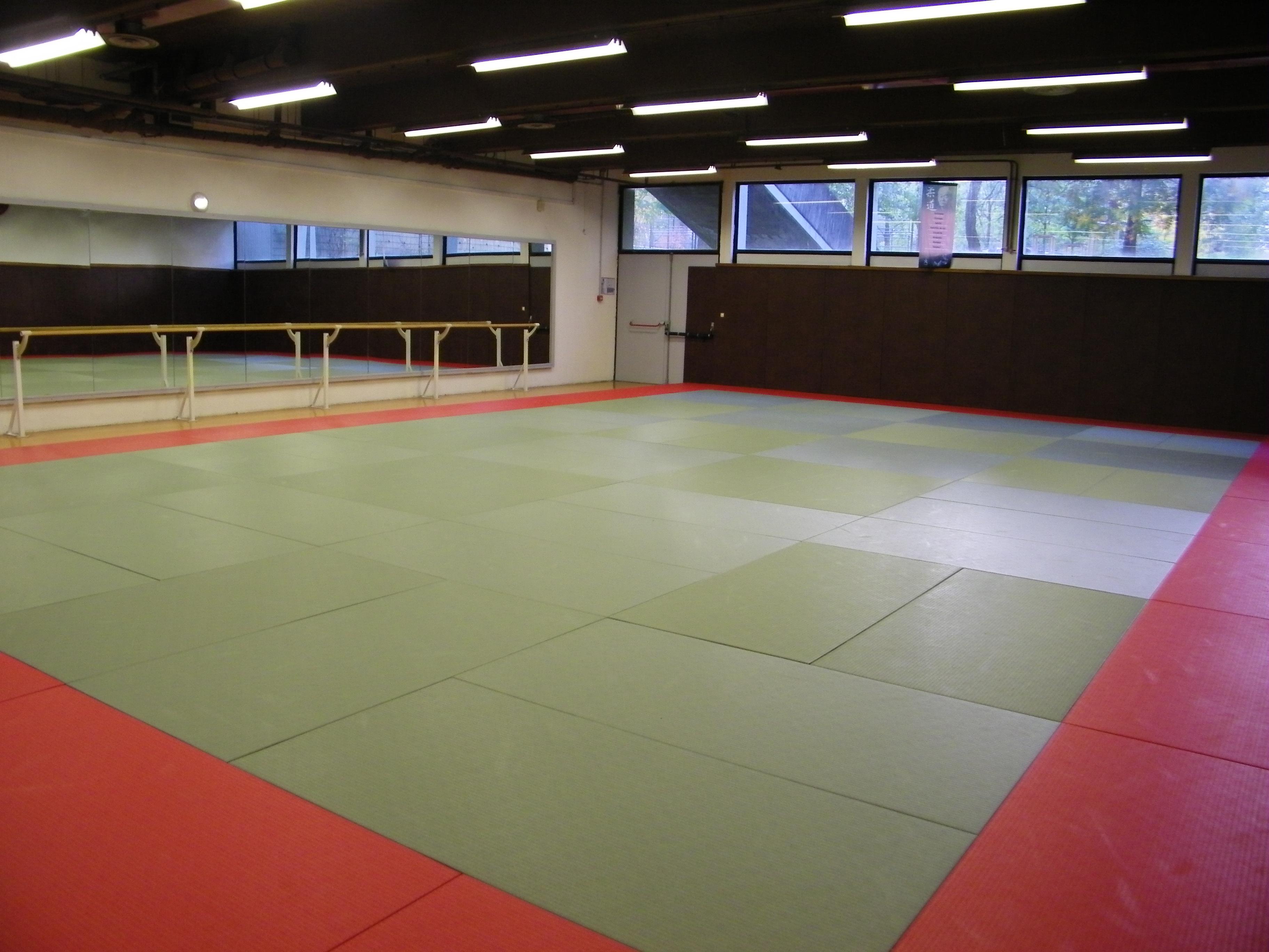 Grenoble karate academy le club for Prix du m2 grenoble